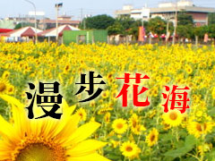 四季之美.台灣賞花之旅