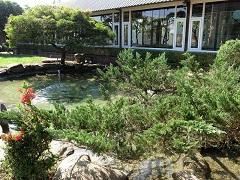 嘉義中埔波尼塔香草庭園蔬食餐廳