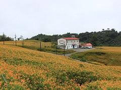 花蓮赤柯山‧小瑞士農場
