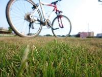 樂活自行車.單車旅遊